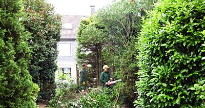 Galabau Knof - Garten und Landschaftspflege