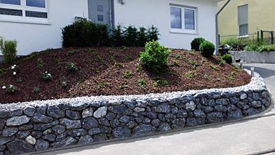 Natursteinmauer Galabau Knof